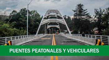 Puentes peatonales y vehiculares